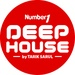 Number1 FM - Number1 Deep House Logo
