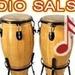Radio Salson Logo