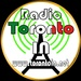 Toronto Italian Network - Radio Toronto IN Logo