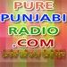 Pure Punjabi Radio Logo
