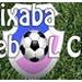 Radio Web Capixaba Logo