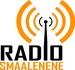 Radio Smaalenene Logo