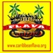 CariBBean Flava Radio  Logo