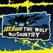 107.9 The Wolf - WDSY-HD2 Logo