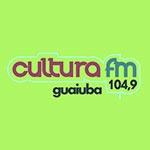 Rádio FM Cultura 104