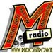 Radio Zeri Mitrovices Logo