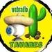 Web Rádio Tavares Logo