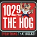 102.9 The Hog - WHQG Logo