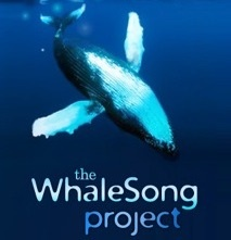 WhaleSong Project