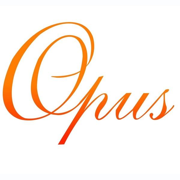 Opus 1510 AM - XEQI