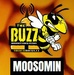 The Buzz Moosomin Logo