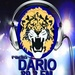 Radio Dario 89.3 Logo