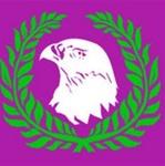 Falcon FM Logo