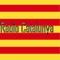 Viqui Ràdio Catalunya Logo