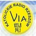 Radio VIA Logo