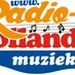 Radio Hollandsemuziek Logo