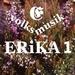ERiKA 1 Logo