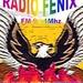 FM Fenix 91.1 Embarcacion Logo