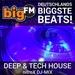 bigFM - Deep & Tech House Logo