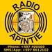Apintie Radio Logo