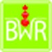 Bayerwaldradio Logo