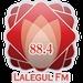 Lalegul FM Logo