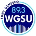 89.3 WGSU  Geneseo's Voice of the Valley Logo