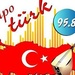 Tempo Turk Radyo 95.8 Logo