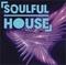 VIP-Radio.FM - Soulful House Logo