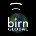 The BIRN - BIRN Global Logo