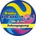 Radio Perkasa FM Logo