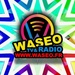 WASEO Logo