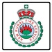 GRN Network   Fire and Rescue Blue Mountains Rural Fire Service Logo