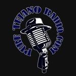 Pure Tejano Radio Logo