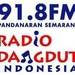 RDI FM 91.8 Logo