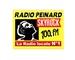 Radio Peinard Skyrock Logo