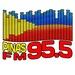 Pinas 95.5 FM - DWDM Logo