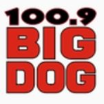 Big Dog 100.9 - CKTO-FM