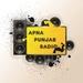 Apna Punjab Radio USA Logo