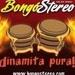 Bongó Stereo Logo