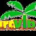 Yardvibez Radio Logo