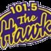 The Hawk - CIGO Logo
