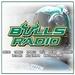 Bulls Radio Logo