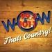 Wow 99.3 & 101.1 - WICO-FM Logo