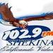 Radio Shekina Logo