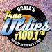 True Oldies Y100 - W261BA-FM Logo