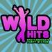 Wild Hits Logo