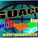 Rádio Iguaçu 987 Logo