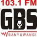 Radio GBS FM Logo