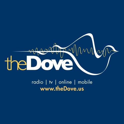 The Dove - KICE
